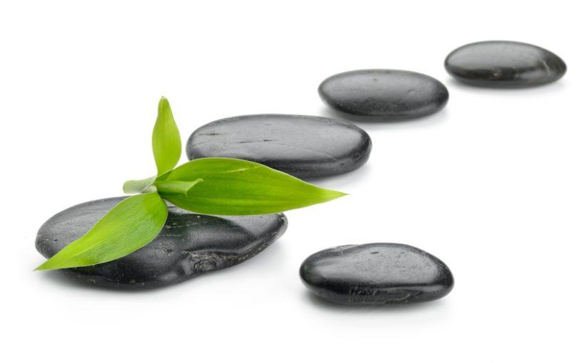 Kamienie milowe – milestones